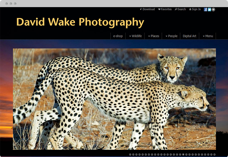 Redframe Photography Websites Client Example - David Wake Photography