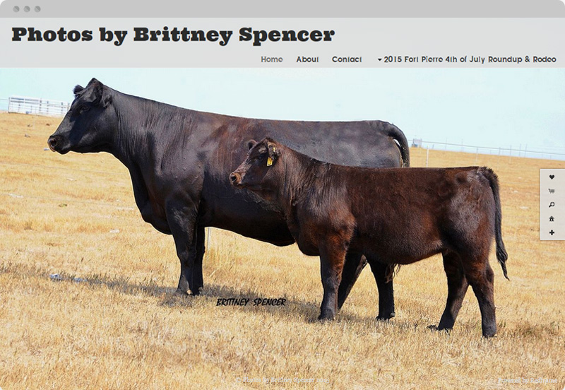 Redframe Photography Websites Client Example - Photos By Brittney Spencer